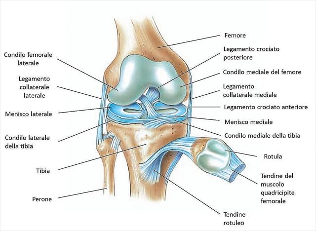 Lesione al menisco