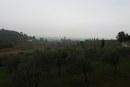 SALCUS fra i boschi e gli ulivi di Castegnero