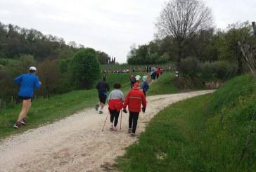 SALCUS sui Berici a Lonigo