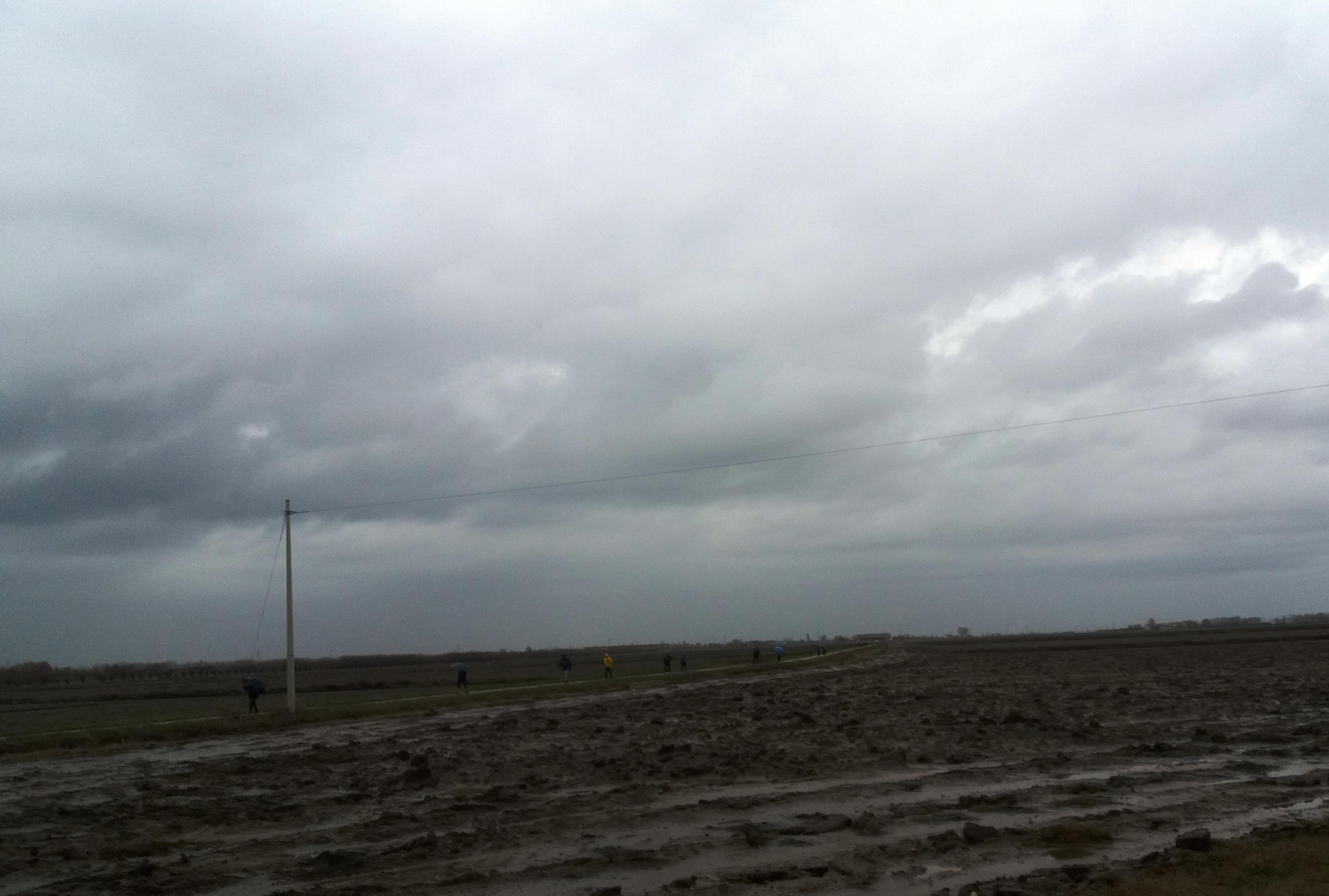 Salcus sotto la pioggia fra le risaie di Villafontana