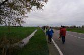 Marcia dei Tri Capitei a Palesella di Cerea